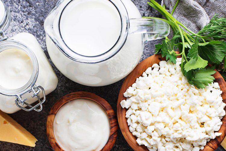 Was ist der Lieblingskäse der Deutschen? – Milch-Fakten zum Weltmilchtag