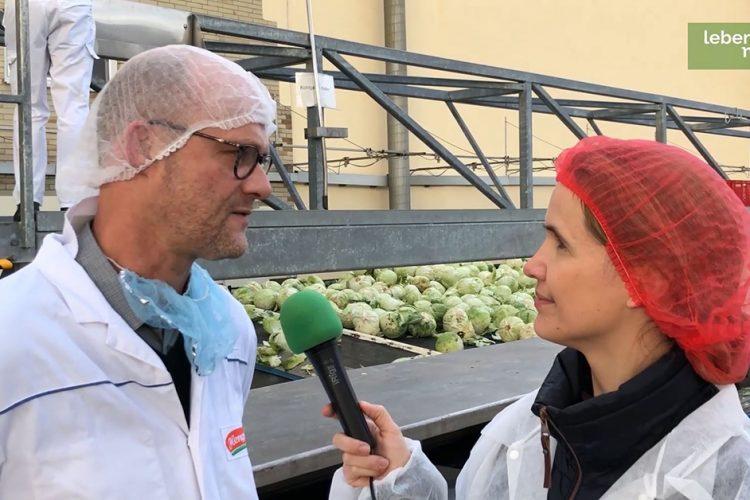 Wie wird Sauerkraut hergestellt? Ein Besuch bei der Firma Hengstenberg (Video)