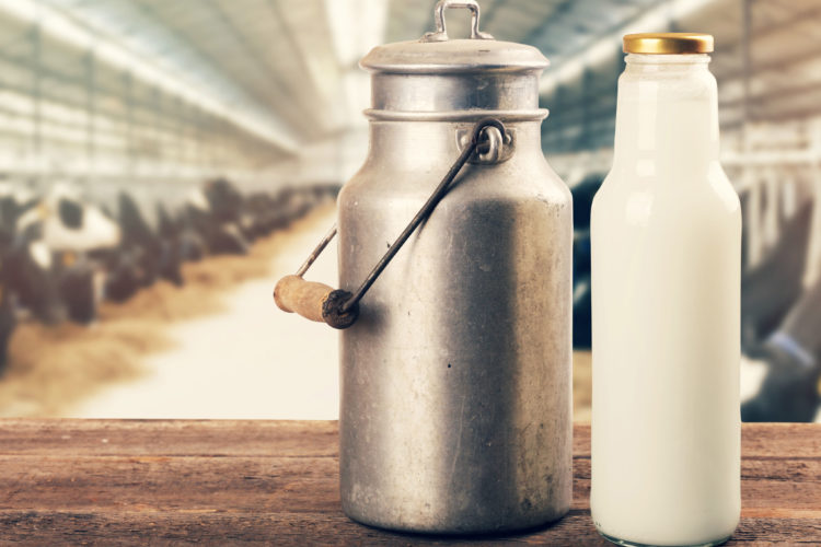 Der Milch auf der Spur