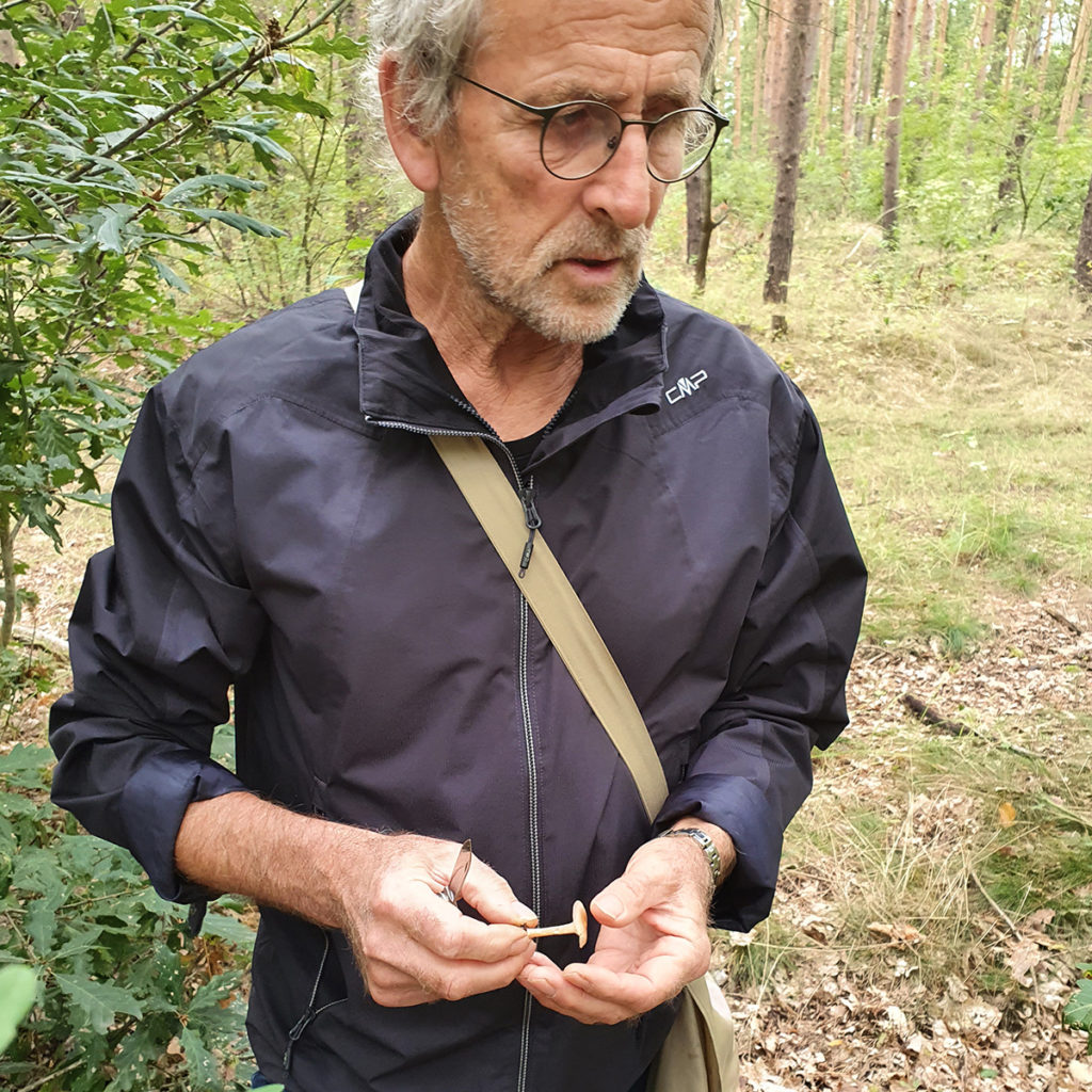 Pilzberater Wolfgang Bivour mit einem ockergelben Trichterling