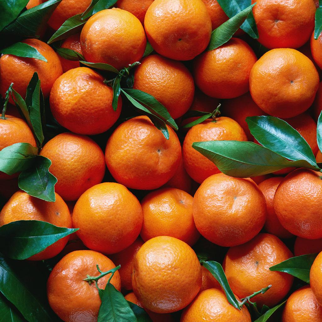 Frische Clementinen