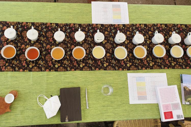 Liebesgrüße aus Korea: Teeanbau im Bergischen Land